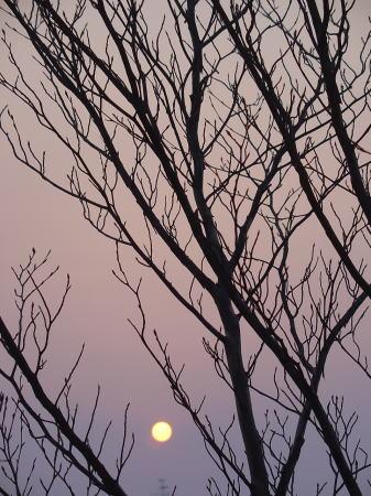 黄砂のような夕暮れの風景